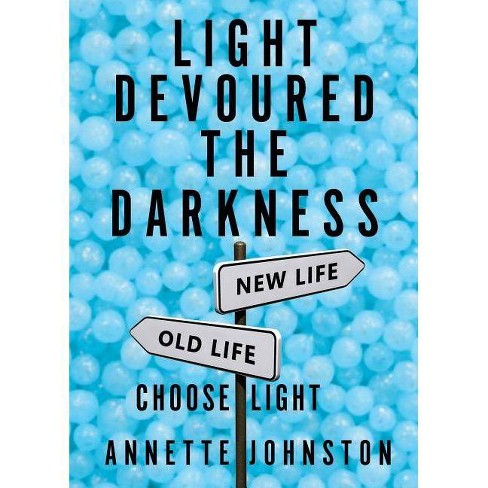 Light Devoured the Darkness - by  Annette Johnston (Paperback) - image 1 of 1