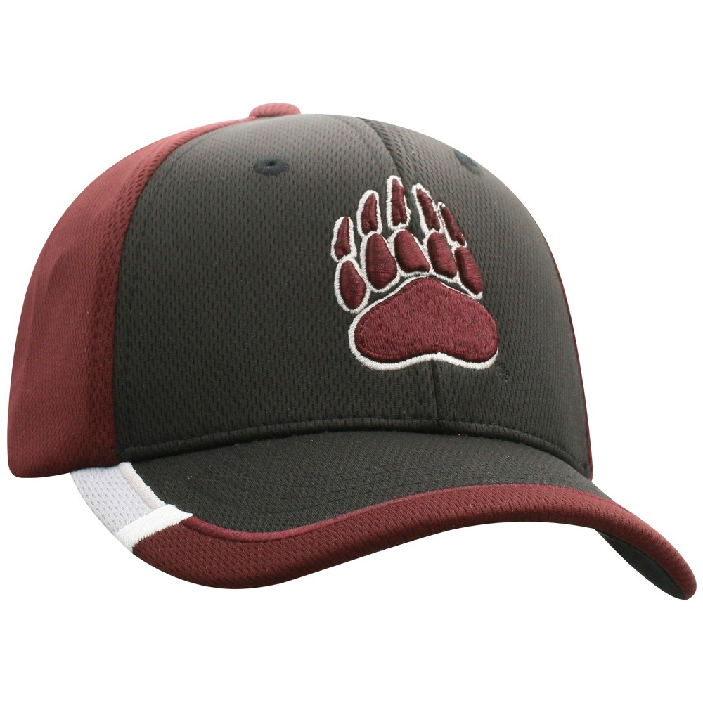 NCAA Boys' Montana Grizzlies Topper Hat