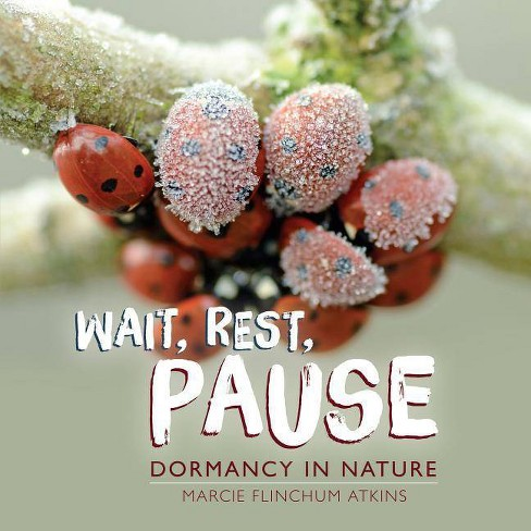 Wait, Rest, Pause - by  Marcie Flinchum Atkins (Hardcover) - image 1 of 1