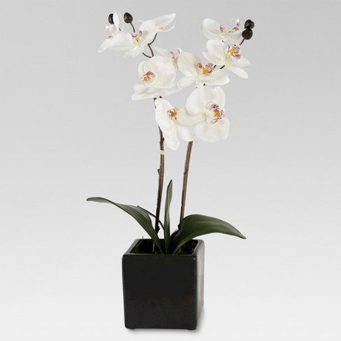"21"" Artificial White Orchid - Lloyd and Hannah - image 1 of 1"
