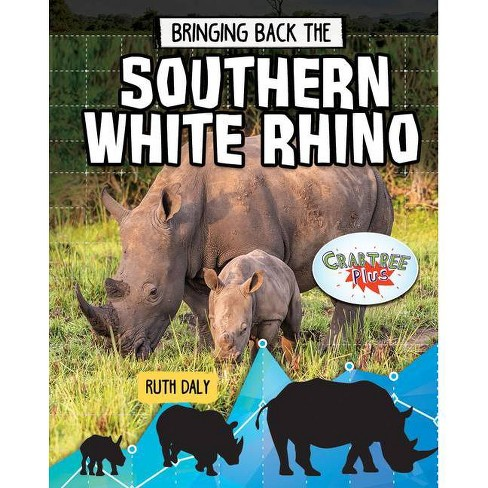 Bringing Back the Southern White Rhino - (Animals Back from the Brink) by  Ruth Daly (Paperback) - image 1 of 1
