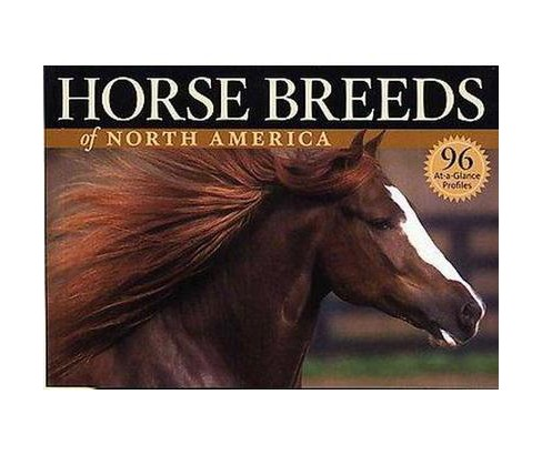Horse Breeds of North America (Paperback) (Judith Dutson) - image 1 of 1