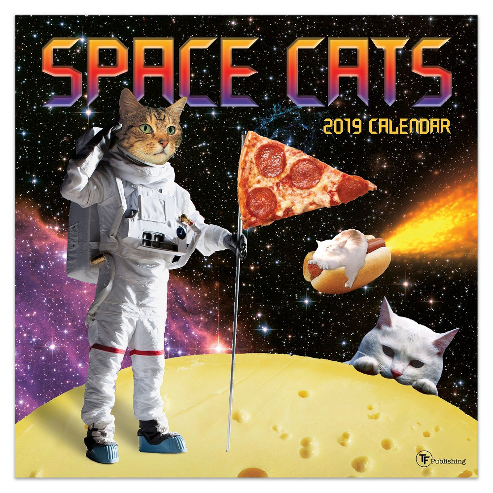 2019 Wall Calendar Space Cats - TF Publishing, 2019 Tf Publishing Space Cats Wall Calendar