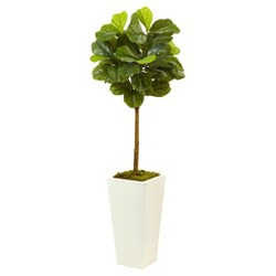 Fiddle Leaf Fig in White Planter (4.5ft) - Nearly Natural