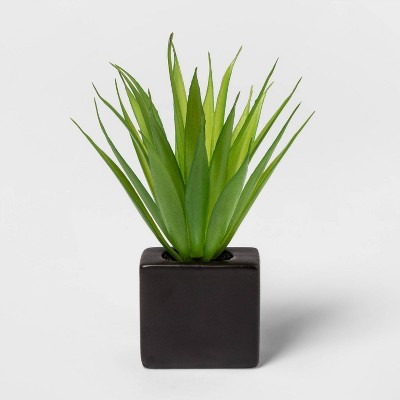 "6"" x 3.7"" Artificial Succulent In Magnetic Black Pot - Project 62™"
