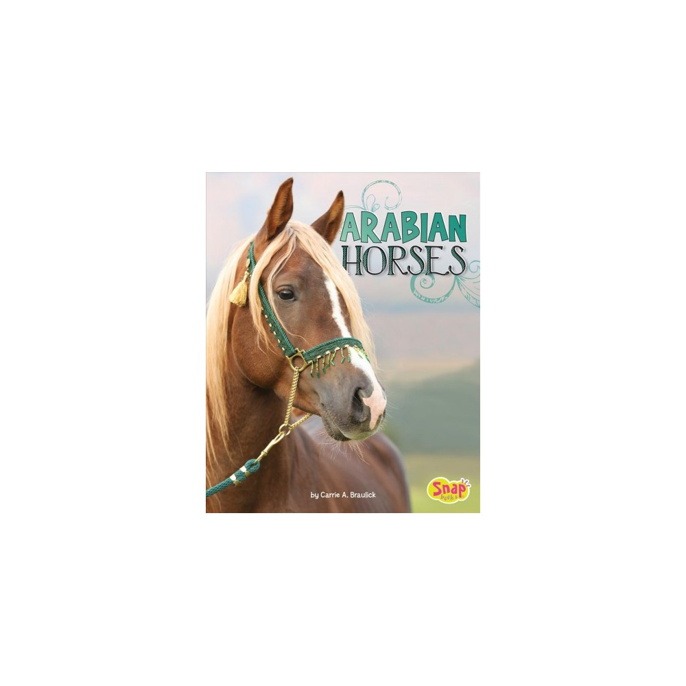 Arabian Horses - (Snap) by Carrie A. Braulick (Paperback)