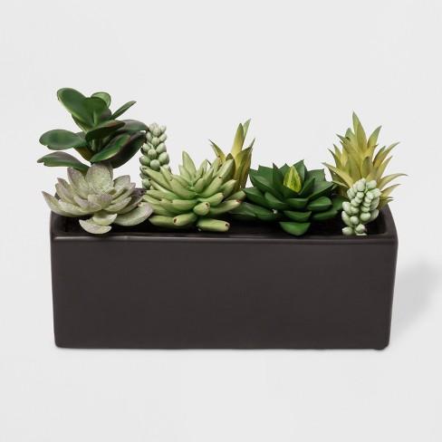 Faux Succulent Plants In Black Planter Project 62