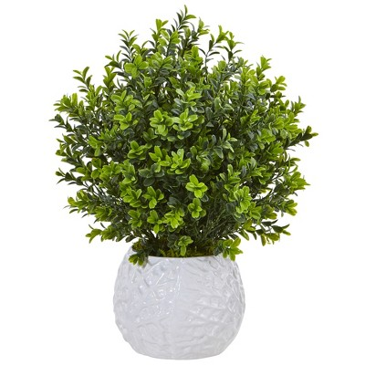 Boxwood Evergreen Artificial Plant In White Vase - Nearly Natural
