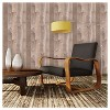Devine Color Reclaimed Wood Peel & Stick Wallpaper Twig and Buck Brown - Threshold™ - image 3 of 4