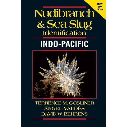 Nudibranch and Sea Slug Identification - Indo-Pacific 2nd Edition - 2 Edition (Paperback) - image 1 of 1