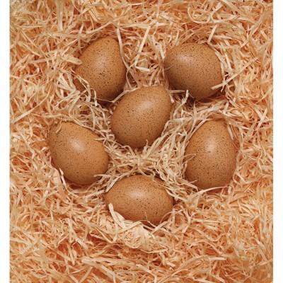 Yellow Door Sensory Sound Eggs  - Set of 6