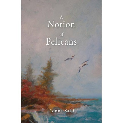 A Notion of Pelicans - by  Donna Salli (Paperback) - image 1 of 1