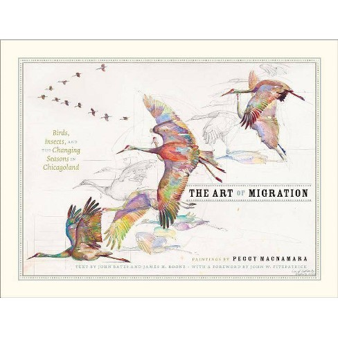 The Art of Migration - (Hardcover) - image 1 of 1