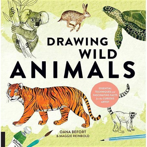 Drawing Wild Animals - (Curious Artist) by  Oana Befort & Maggie Reinbold (Paperback) - image 1 of 1