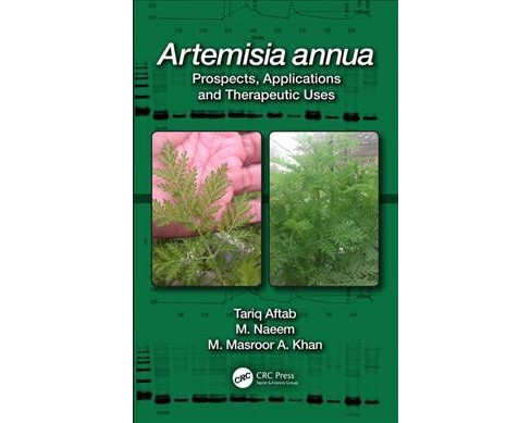 Artemisia Annua : Prospects, Applications and Therapeutic Uses -  (Hardcover) - image 1 of 1