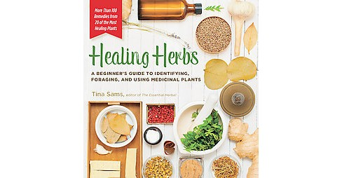 Healing Herbs : A Beginner's Guide to Identifying, Foraging, and Using Medicinal Plants (Paperback) - image 1 of 1