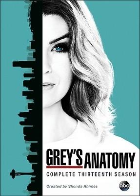 Grey's Anatomy: The Complete Thirteenth Season (DVD)