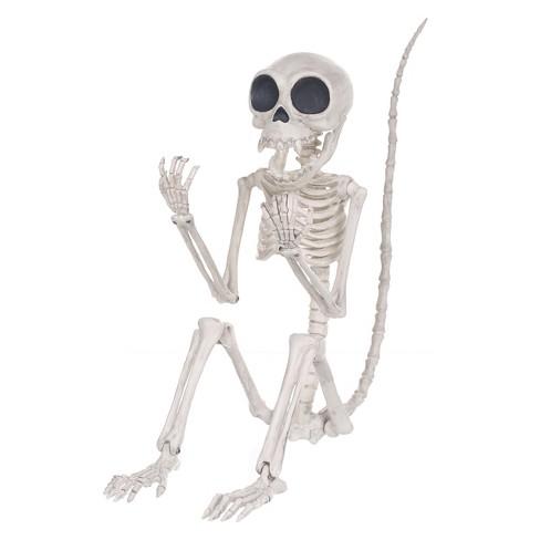 Halloween Monkey Skeleton - Hyde and Eek! Boutique™ : Target