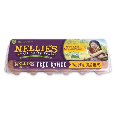 Nellie's Free-Range Grade A Large Brown Eggs - 12ct - image 1 of 3