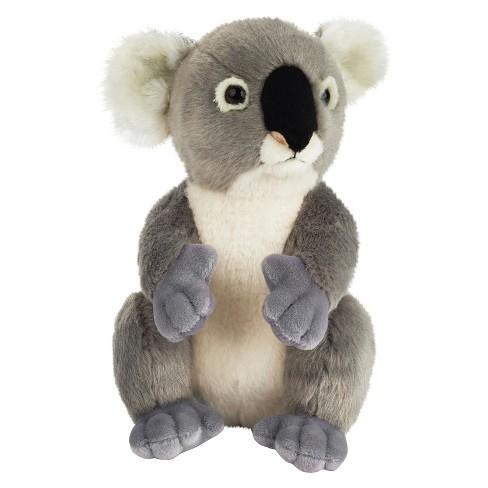 Lelly National Geographic Koala Plush Toy   Target bac01be34
