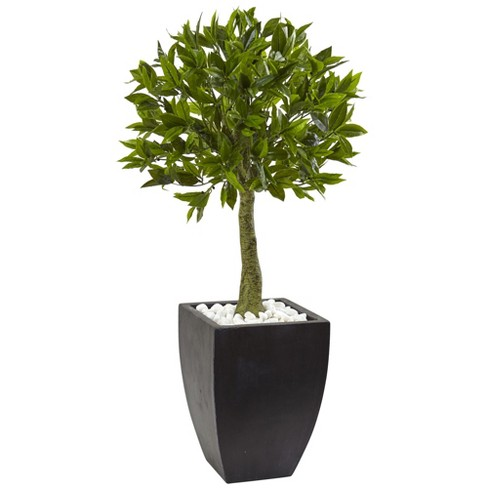 "42"" Bay Leaf Topiary with Black Wash Planter UV Resistant (Indoor/Outdoor) - Nearly Natural - image 1 of 3"