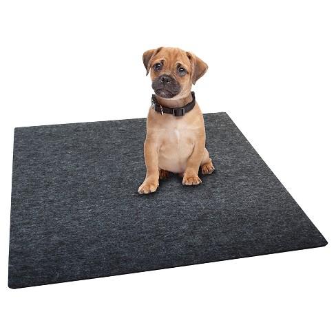Drymate Washable Dog Training Pad - L - image 1 of 4