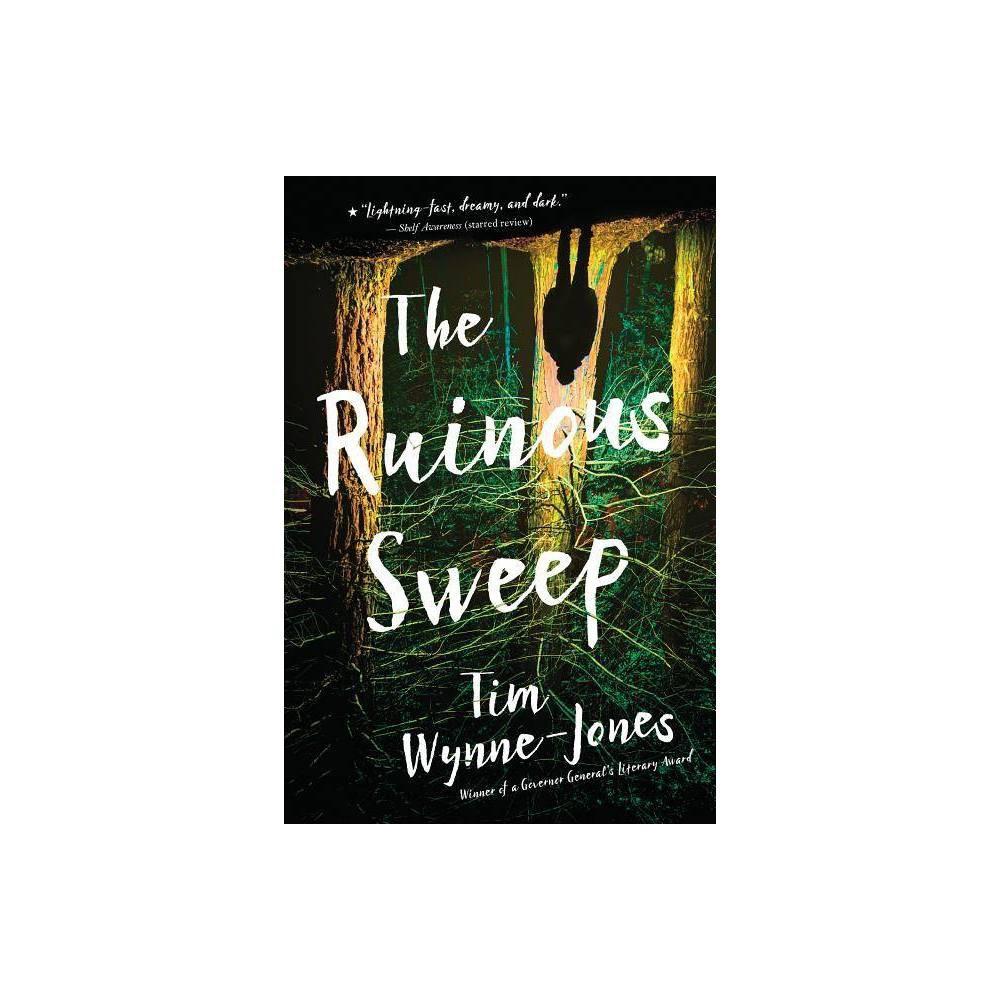 The Ruinous Sweep By Tim Wynne Jones Paperback