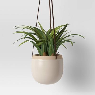 Wall Hanging Plant - Threshold™