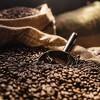 Green Mountain Colombian Medium Roast Ground Coffee - 10oz - image 4 of 4