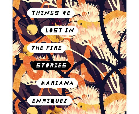 Things We Lost in the Fire : Stories (Unabridged) (CD/Spoken Word) (Mariana Enriquez) - image 1 of 1