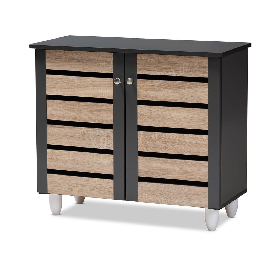 Gisela 2 Door Shoe Storage Cabinet Dark Gray Baxton Studio