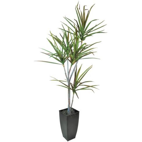 6 3 Artificial Dracaena Tree In Planter Black Lcg Florals Target