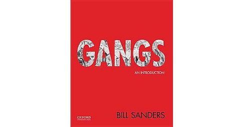 Gangs : An Introduction (Paperback) (Bill Sanders) - image 1 of 1