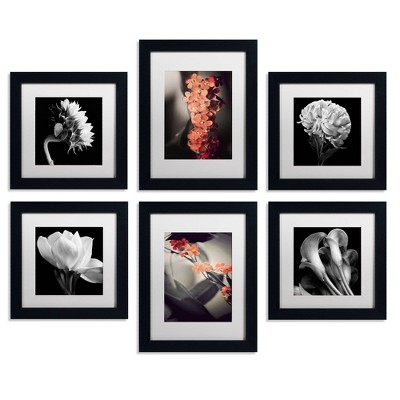 6pc Floral Gallery Wall Collection - Trademark Fine Art