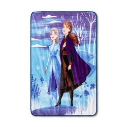 "46""x60"" Frozen 2 Hope and Wonder Throw Blanket - Disney store"