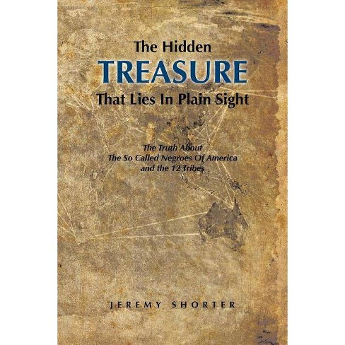 The Hidden Treasure That Lies in Plain Sight - by  Jeremy Shorter (Paperback) - image 1 of 1