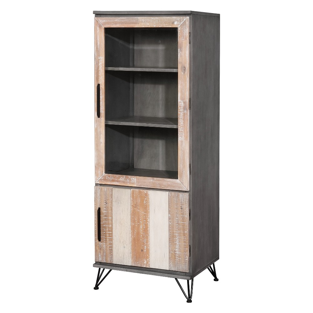 Iohomes Capasso Transitional 2 Door Pier Cabinet Gray Small - Homes: Inside + Out