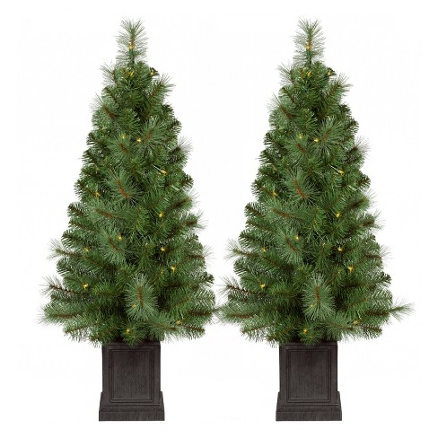 35ft prelit slim artificial christmas tree 2pk potted douglas fir clear lights wondershop - Pre Lit And Decorated Christmas Trees