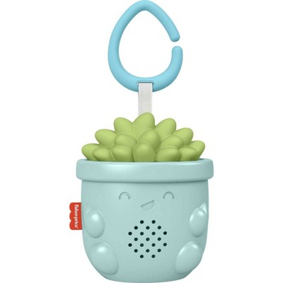 Fisher-Price Succulent Soother