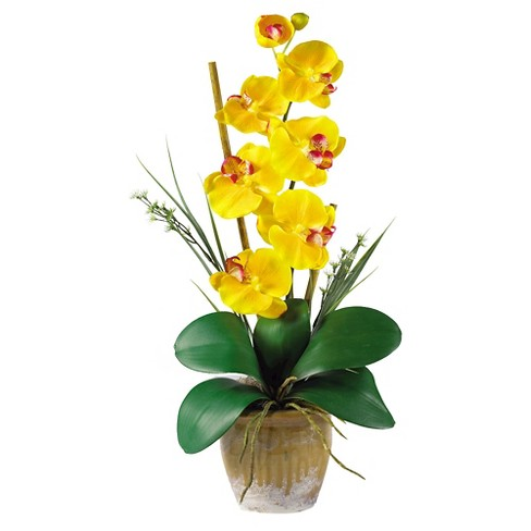 Nearly natural phalaenopsis silk orchid flower arrangement yellow nearly natural phalaenopsis silk orchid flower arrangement yellow mightylinksfo