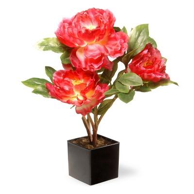 15  Fuchsia Peony Flower - National Tree Company