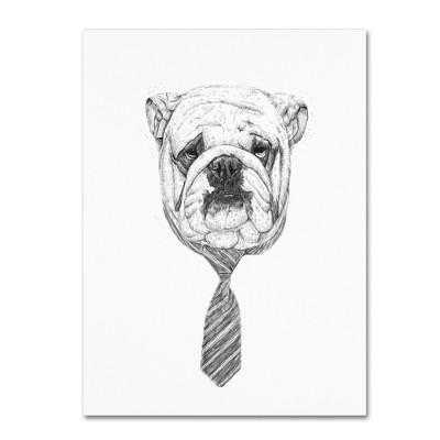 'Bulldog' by Balazs Solti Ready to Hang Canvas Wall Art