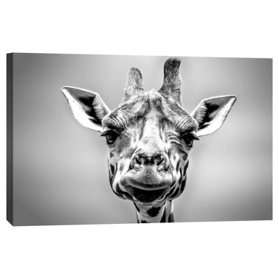 Giraffe II Decorative Canvas Wall Art 11 x14  - PTM Images