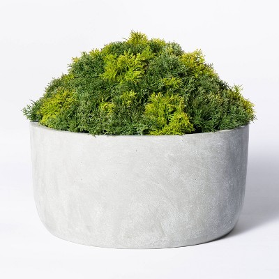 Faux Moss in Basket Green - Threshold™ designed with Studio McGee