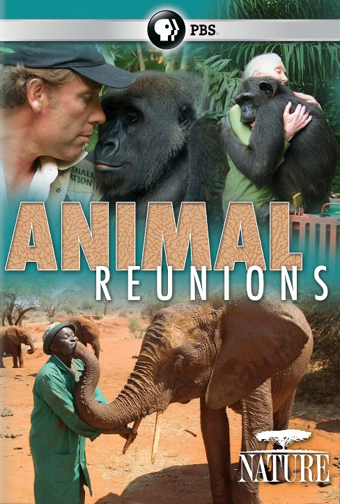 Nature:Animal reunions (DVD) - image 1 of 1