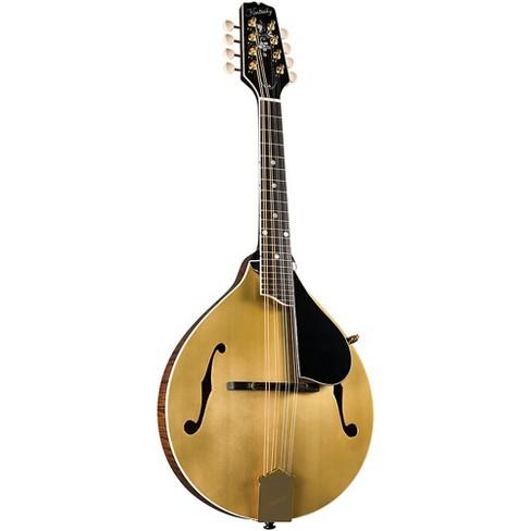 Kentucky KM-508 Artist A-Model Mandolin - Gold Top Gold Top - image 1 of 2