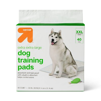 Puppy & Adult Dog Training Pads - 40ct - XXL - Up&Up™