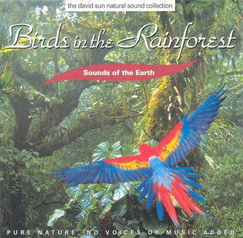 Artist not provided - Birds in the rainforest (CD) - image 1 of 1