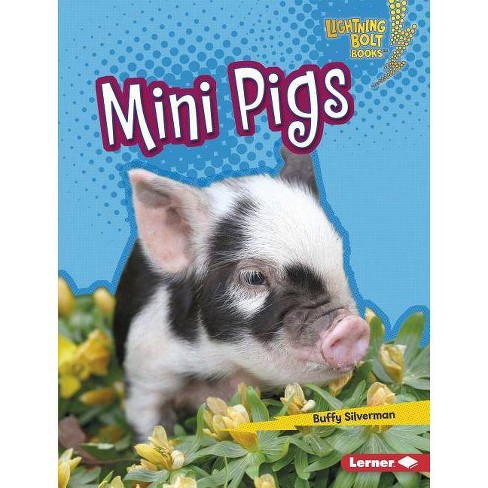Mini Pigs - (Lightning Bolt Books (R) -- Little Pets) by  Buffy Silverman (Hardcover) - image 1 of 1