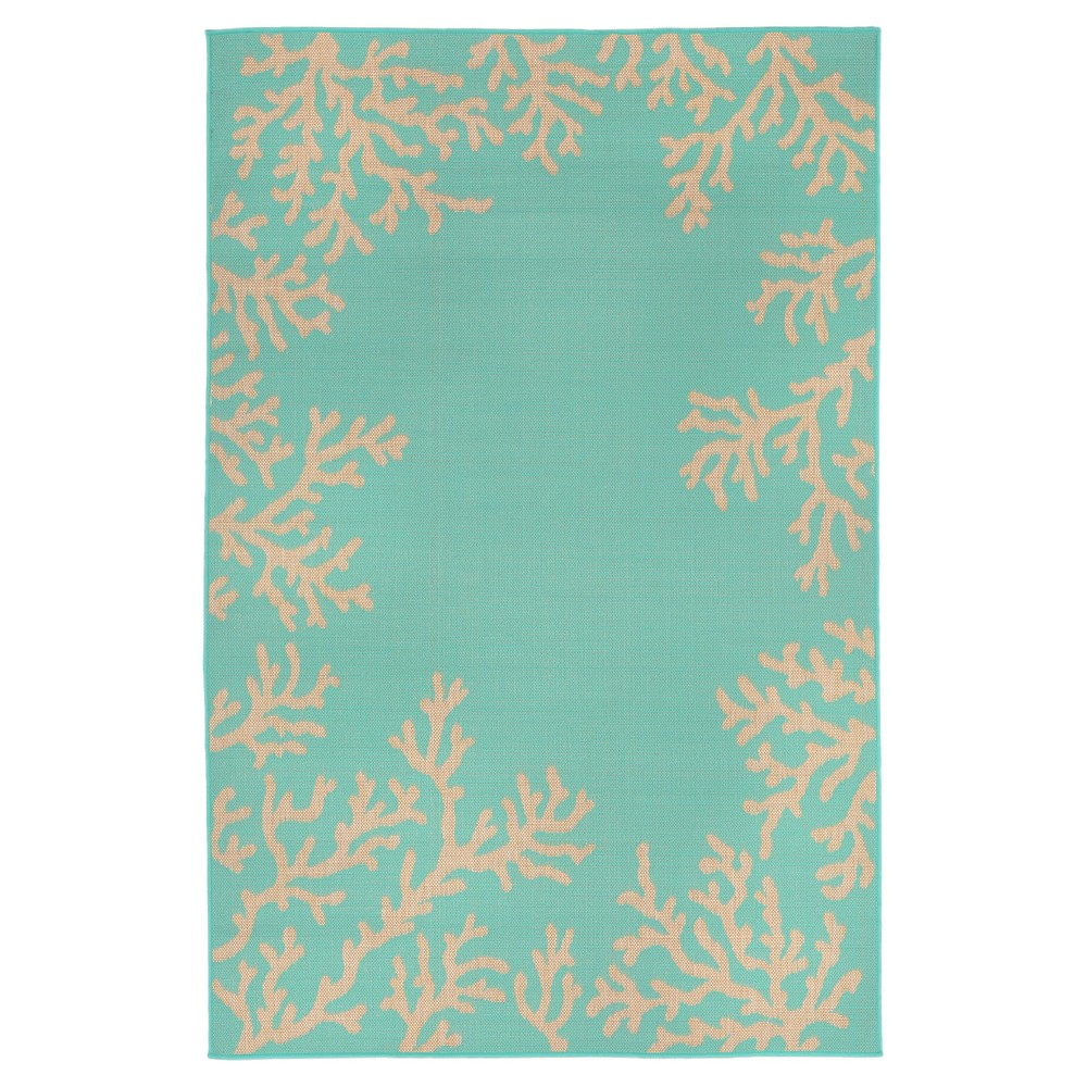 Terrace Indoor/Outdoor Coral Border Turquoise Rug 4'10
